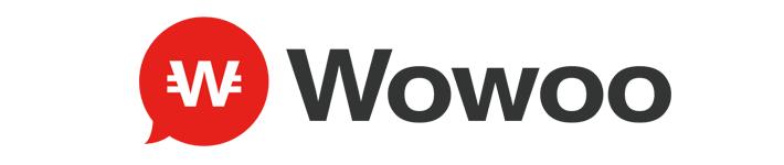 Wowoo(WWB)の暴落が止まらない!欠落した既存投資家への配慮をぶった斬る!
